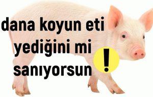 Türkiye'de Domuz Eti Üretiminin Arttığı ve Et Ürünlerine Karıştırıldığı İddiası